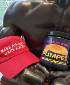 Make America Gain Again Hat